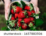 Strawberries In A Wooden Basket ...