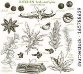 kitchen herbs and spice  vector ... | Shutterstock .eps vector #165788639