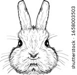 A Cute Rabbit Face. Hand Drawn...