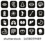 human anatomy or human body... | Shutterstock .eps vector #1658059489