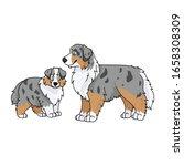 cute cartoon australian...   Shutterstock .eps vector #1658308309
