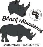 African Wild Animal Black Rhino ...