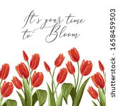 Time To Bloom Quote And Red...