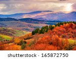 autumn hillside with pine and Colorful foliage aspen trees near valley - stock photo