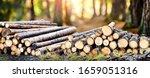 Log Trunks Pile  The Logging...