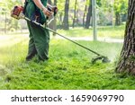 Worker mowing tall grass with...