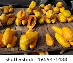 The Papaya  Carica Papaya  ...