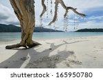 Beautiful Beach With White Dea...