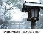 Japanese Lantern Shoot In A...