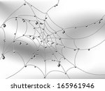cobweb with luxury silver drops ... | Shutterstock .eps vector #165961946