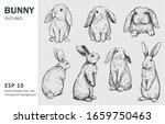 Sketch Of Bunny. Hand Drawn...
