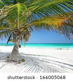 beautiful white sand beach with ... | Shutterstock . vector #166005068