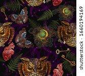 mystic owl  key  moon ...   Shutterstock .eps vector #1660194169