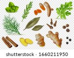 herbs  dry spices and spicy... | Shutterstock .eps vector #1660211950