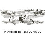 vector cows on the field.... | Shutterstock .eps vector #1660270396