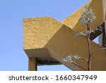 Small photo of abstract light brown structure with kitschy tree in the foreground