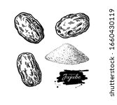 dry jujube vector drawing.... | Shutterstock .eps vector #1660430119