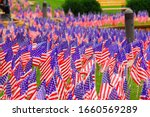 Large Numbers Of American Flags ...