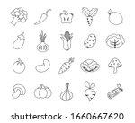 hand drawn vegetables  broccoli ... | Shutterstock .eps vector #1660667620