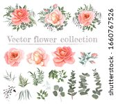 vector set of pink roses and...   Shutterstock .eps vector #1660767526