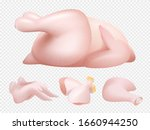 fresh chicken. food bird meat... | Shutterstock .eps vector #1660944250