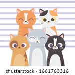 cats make me happy  many cats...   Shutterstock .eps vector #1661763316