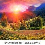 carpathian summer is the... | Shutterstock . vector #166183943