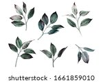 leaves  watercolor  can be used ... | Shutterstock . vector #1661859010