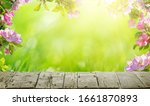 spring flowers background  pink ... | Shutterstock . vector #1661870893