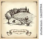 vineyard landscape   hand drawn ... | Shutterstock .eps vector #166209944