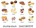 nuts and seeds. almond and... | Shutterstock .eps vector #1662180559