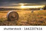 Hay Rolls Punctuate A Field...