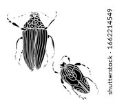 set of beetles line  insects... | Shutterstock .eps vector #1662214549