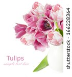 peony bunch isolated on white... | Shutterstock . vector #166228364