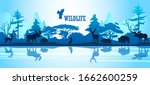 wildlife vector background with ... | Shutterstock .eps vector #1662600259