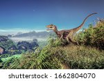 Velociraptor Dinosaur On  The ...