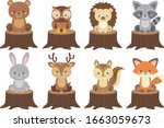 Cute Woodland Animals Vector...