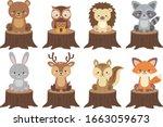 Cute Woodland Animals Vector...