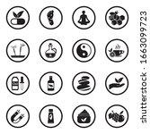 alternative medicine icons....   Shutterstock .eps vector #1663099723