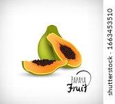 vector illustration. exotic... | Shutterstock .eps vector #1663453510