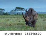 roaming rhino   Shutterstock . vector #166346630