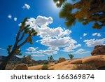 Joshua Tree National Park Yucc...