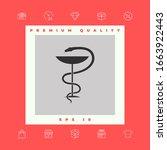 pharmacy symbol medical snake... | Shutterstock .eps vector #1663922443