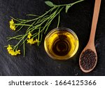 mustard branch with pods and... | Shutterstock . vector #1664125366