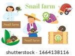 farm snails set of... | Shutterstock .eps vector #1664138116