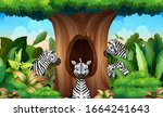 a group of zebra looking a... | Shutterstock . vector #1664241643
