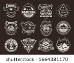 vintage summer recreation... | Shutterstock . vector #1664381170