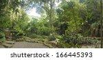 Tropical Garden  Malaysia