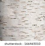 Background Of The Cortex Tree...