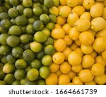 Small photo of Lemons and limes, citrus fruits, divided into two piles, contrasting in colour.